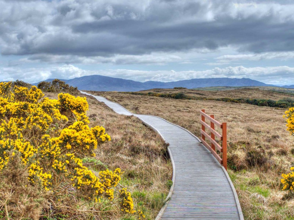 erris-beo-experiences-Ballycroy-National-Park-01