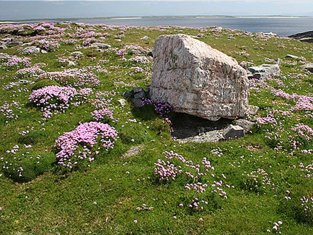 erris-beo-explore-Gneiss-Rock-at-Annagh-Head-Ceann-an-Eanaigh-01
