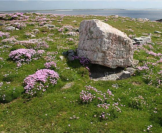 Gneiss-Rock-at-Annagh-Head-Ceann-an-Eanaigh-01